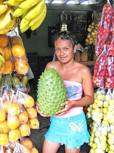 Guanábana / Annonaceae fruit